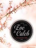 Eve & Caleb – In der gelobten Stadt (Anna Carey)