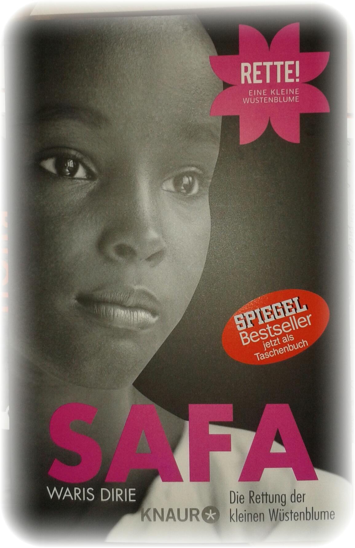 fbm15-safa